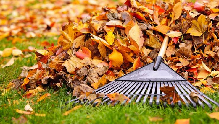 To-Dos: Your October Home Checklist