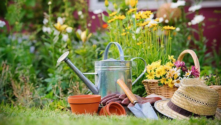 10 Gardening Tips & Ideas every Gardener should know
